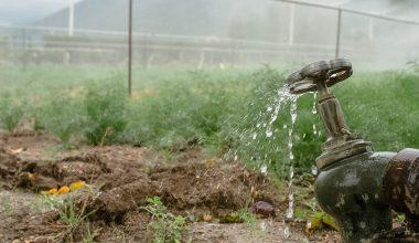 vandboring til haven